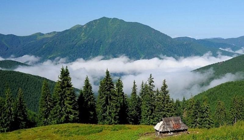 Відпочинок в Україні з Рівного за доступними цінами фото